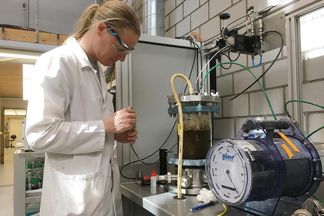 Nutzung von Biomasse und Abfällen (ZHAW)